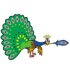 cartoon peacock vector image vector image