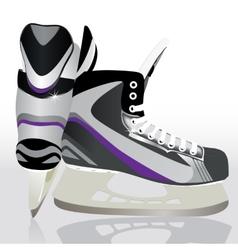 Ice skates - sports equipment vector