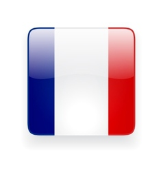 Square icon with flag of France vector image vector image