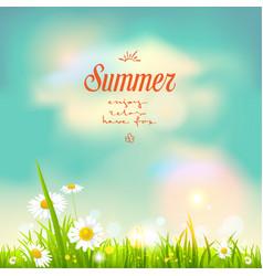 Summer flowers vector