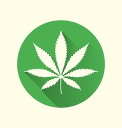 cannabis marijuana flat design icon vector image