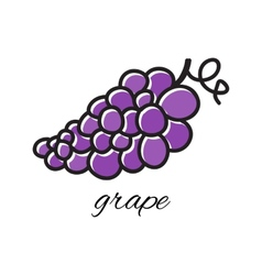 Doodle grape hand-drawn object isolated on white vector