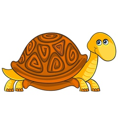 Turtle Cartoon african wild animal character vector image