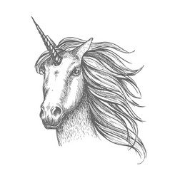 unicorn mythic horse sketch vector image