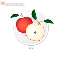 Fresh apple a popular fruit in lebanon vector