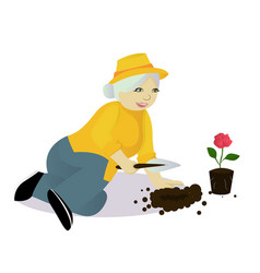 Granny gardening isolated vector
