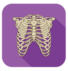 ribs flat icon purple vector image vector image