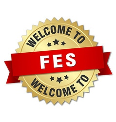 Fes 3d gold badge with red ribbon vector