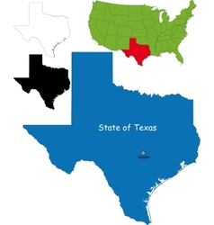 Texas map vector