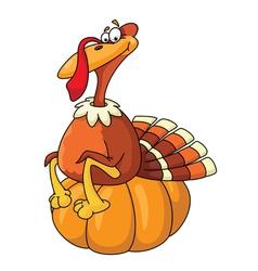 turkey on pumpkin vector image