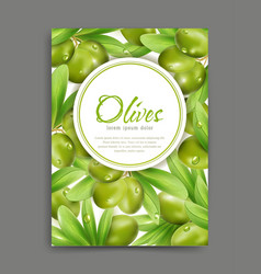 With green olives and leaf isolation vector