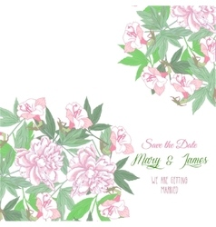 Background with pink flowers and pink peonies vector