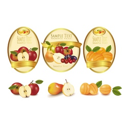 Gold labels and fruits vector