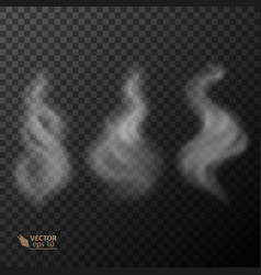 set of transparent smoke vector image vector image