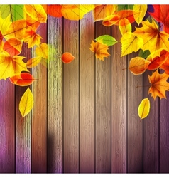 Yellow wet autumn leaves on the background eps10 vector