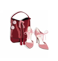 Beautiful shinning shoes and bag vector