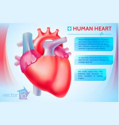 Cardio medical template vector