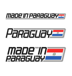 made in paraguay vector image vector image