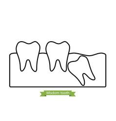Wisdom tooth - cartoon outline style vector