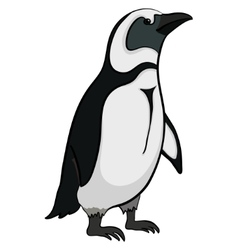 Emperor penguin vector