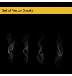 Set of cigarette smoke vector