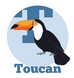 Abc cartoon toucan2 vector