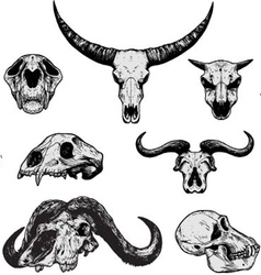 ANIMAL SKULLS - Hand Drawn vector image