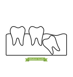 Wisdom tooth - cartoon outline style vector