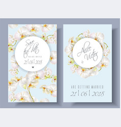 floral orchid banners vector image vector image