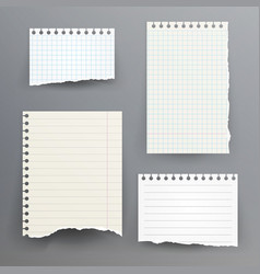notebook papers with torn edge vector image