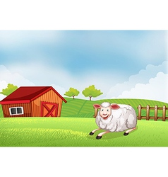 A sheep lying on the farm with a barn vector image vector image