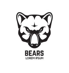 Bear head isolated on white background Sport team vector image