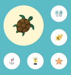 flat icons sea star slippers anti-sun cream and vector image vector image