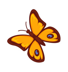 orange butterfly isolated on white background vector image