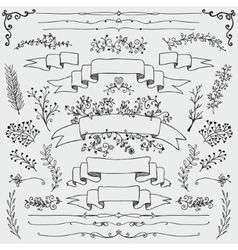 Hand Drawn Floral Design Elements vector image