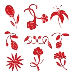 Set of red flower design elements vector
