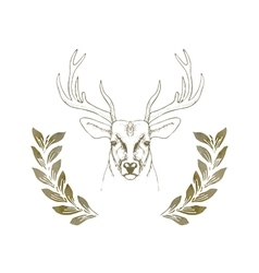 Hand drawn deer head with horns vector