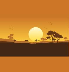 Kangaroo scenery silhouette vector