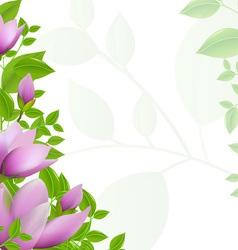 Magnolia Background vector image vector image