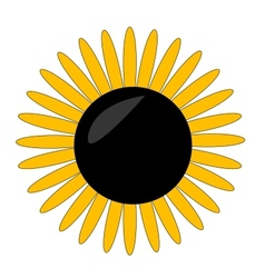 yellow flower symbol on the white vector image vector image