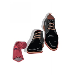 Black classic male shoes and red tie vector