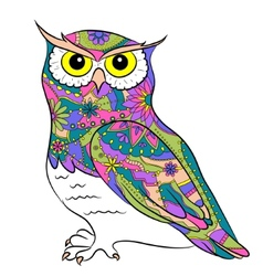 Colorful painted owl vector