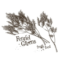 Dill fennel logo design template fresh vector