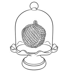 France glass cloche vector