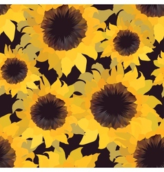 Sunflower flower seamless pattern vector