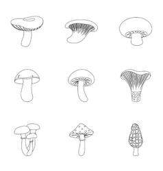 Mushroom set icons in outline style Big vector image