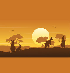 Kangaroo on the hill scenery silhouettes vector