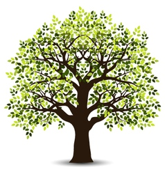 stylized tree for your design vector image