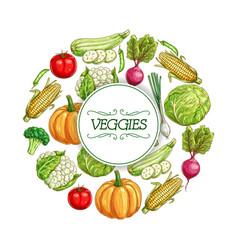 vegetables sketch poster for food label design vector image vector image