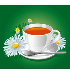 Herbal chamomile tea vector